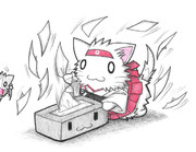 ティッシュで遊ぶ翔鶴ネコ