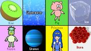 キウイ、水中、豚、氷、河童、天王星、姫、イクラ