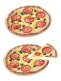 【素材】サラミピザ