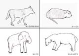 動物のスケッチ