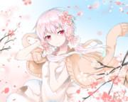 穏ちゃんと桜