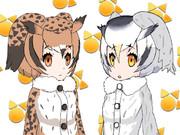 ミミちゃん助手 & コノハちゃん博士