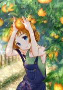 オレンジペコ