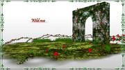 Wild_rose_3.2