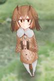 ミミちゃん助手