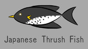 クロツグミ魚