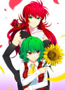 向日葵×薔薇