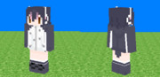 [Minecraft] フンボルトペンギン [スキン]