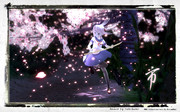 夜桜斬撃(市さん更新に寄せて)
