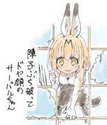 ネコ科の特徴サーバルちゃん3
