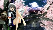 【桜の似合う女選手権】布都