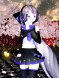 桜とおんハク(14)さん