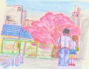 のすじいの昭和色鉛筆戯(ざ)れ絵・・本郷あたりの路地桜