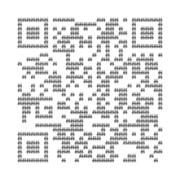 Quick Raccoon code