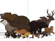 【配布】日本の野生動物セット【OMF8非対象分含む】