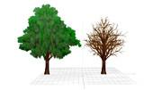 【MMDアクセサリ配布あり】山田式遠景用緑の木と落葉の木