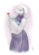 R - carnation