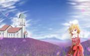 花畑と教会