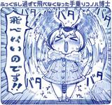 ふっくら太くなった手乗りコノハちゃん博士