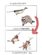 イッカクアライグマ さん