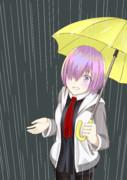 梅雨マシュ