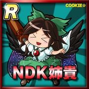NDK姉貴(レア)