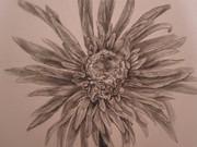 花のデッサン