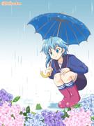 水無月と梅雨