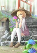 紫陽花とケロ