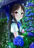 ありすと梅雨と紫陽花と。