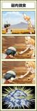 けもフレ 4コマ漫画②