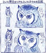 自分の描く手乗りコノハ博士とリアルコノハズクの比較