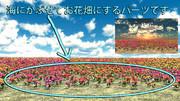 【スカイドームパーツ】お花畑(昼・夕方)SPA3【MMDステージ配布】