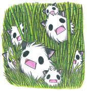 パンダ?の竹林