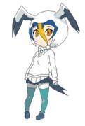 海鳥のフレンズ~!