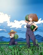 夏のしばふ村 スイカ畑