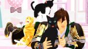 【男ク祭!】猫カフェにて