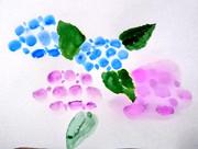 再度紫陽花を描いてみた