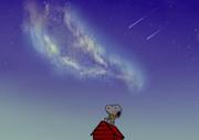 星とスヌーピー