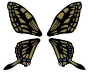 エタニティラルバの羽根(素材)
