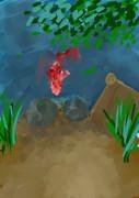 錦鯉のいる池