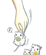 白ネズミの捕まえ方