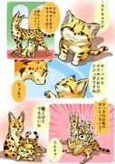 元動物フレンズ6