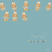 serval_metronome