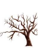 立つ木ありがとう