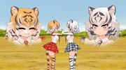俺が持つトラとホワイトタイガーのイメージ(普段)