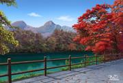 秋の毘沙門沼