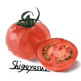 【お題絵】トマト模写