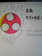 シールド『ヤタノカガミ』を描いてみました。