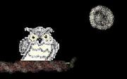 月夜のフクロウ